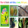 FORLIET 80WP – THUỐC ĐẶC TRỊ BỆNH NỨT THÂN, XÌ MỦ, THỐI RỄ, SƯƠNG MAI